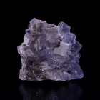 Fluorite with Pyrite La Viesca M04453