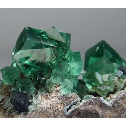 Fluorite with Galena, Diana Maria Mine - Rogerley M04100