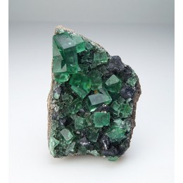 Fluorite with Galena, Diana Maria Mine - Rogerley M04106