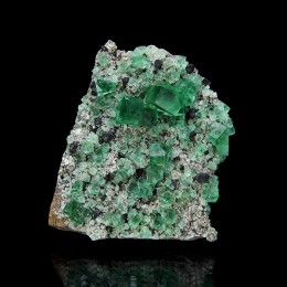 Fluorite with Galena, Diana Maria Mine - Rogerley M04098
