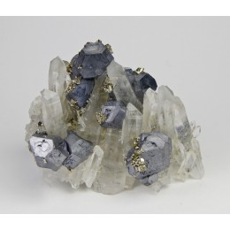 Galena with Pyrite on Quartz Bulgaria M03336