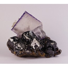 Fluorite on Sphalerite Elmwood M.-US M02942